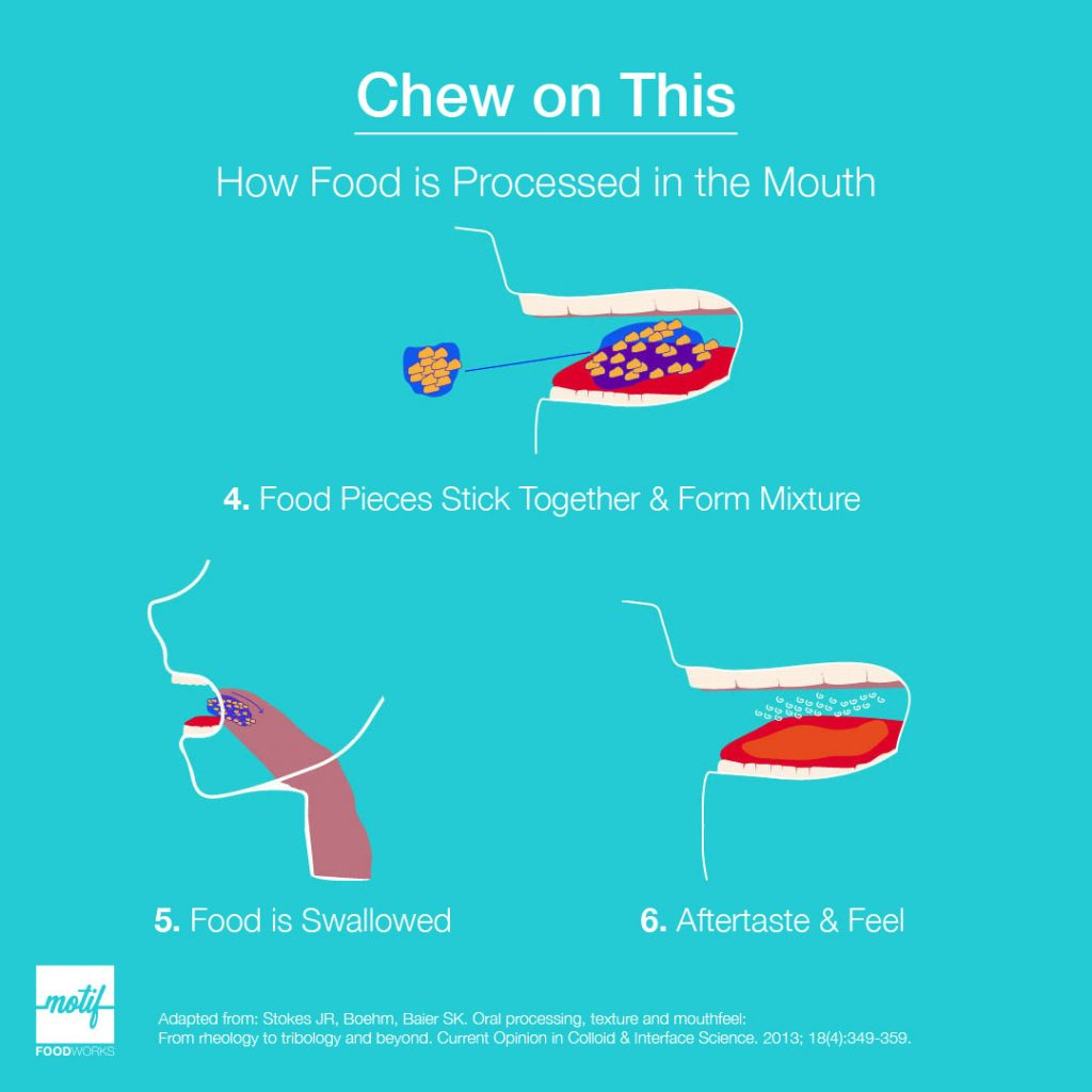 Diagram of how food is processed in the mouth, from first bite to aftertaste